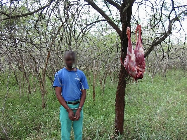 Poacher with Bush Meat