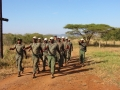 Squad Drills
